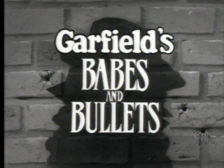 <i>Garfields Babes and Bullets</i>