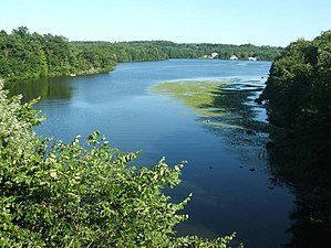 Tohickon Creek - Tohickon Creek widens as it flows into Lake Nockamixon.