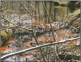 Bog iron - Typical iron-bearing ground water emerging as a spring. The iron is oxidized to ferric hydroxide upon encountering the oxidizing environment of the surface. A large number of these springs and seeps on the flood plain provide the iron for bog iron deposits.