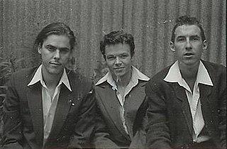 The Whitlams Australian rock band
