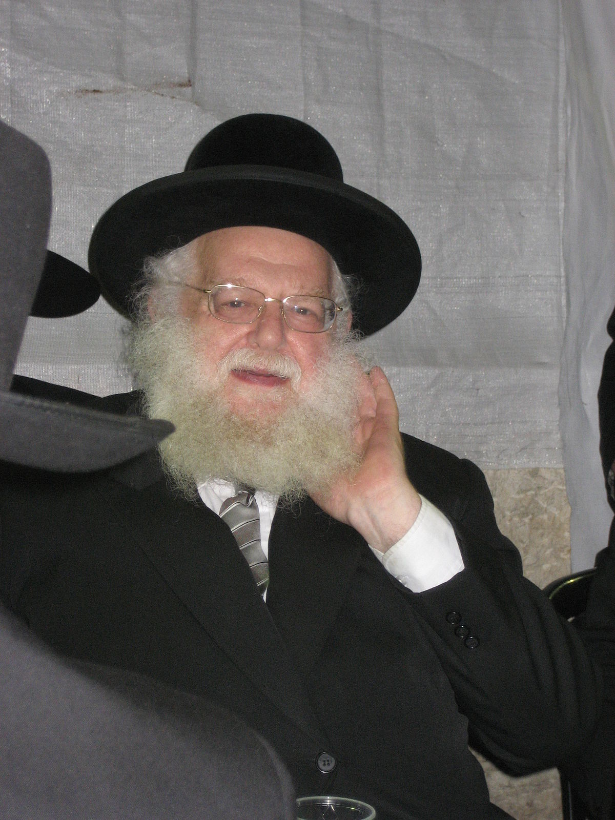 Pesach Eliyahu Falk - Wikipedia