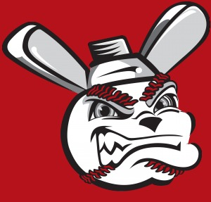 Wichita Wingnuts - Image: Wichita Nuts cap
