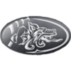 Badalona Dracs - Image: Badalona dracs logo