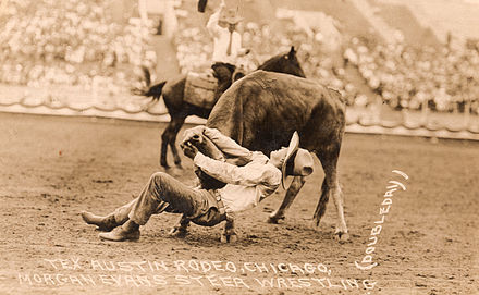 "Bulldogging photo of ""Cowboy Morgan Evans"", 1927 World Champion Cowboy Morgan Evans.jpg"