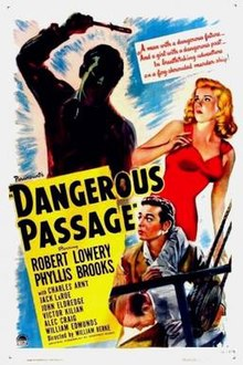 Dangerous Passage FilmPoster.jpeg