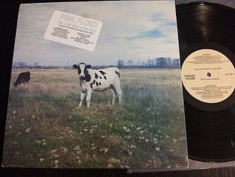 "Bootleg recording - The Pink Floyd bootleg The Dark Side of the Moo collected early singles and B-sides. When released, it was the only way to hear the studio version of ""Astronomy Domine"" in the U.S, as it was not included on the U.S. issue of The Piper at the Gates of Dawn"