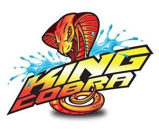 King Cobra (ride) water slide
