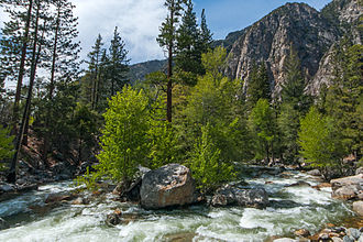 Kings Canyon National Park - The Roaring River, a tributary of the South Fork Kings River