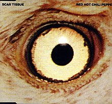 red hot chili peppers scar tissue para