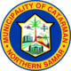 Official seal of Catarman