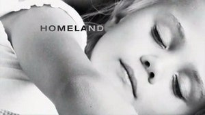 Homeland (TV series) - Image: Homeland TV Series