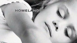Homeland (TV series) - Image: Homeland TV Series