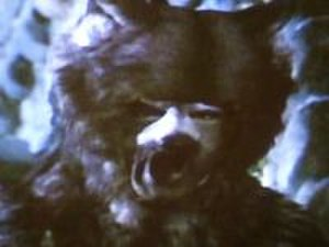 Maugrim - Maugrim, as portrayed by Martin Stone in The Chronicles of Narnia