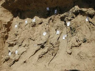 Dasht-i-Leili massacre - Picture of a mass grave from the Dasht-e-Leili massacre, published by the United Nations and Physicians for Human Rights.
