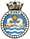 SURF badge-1-.jpg