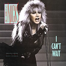 Stevie Nicks - I Can't Wait.jpg