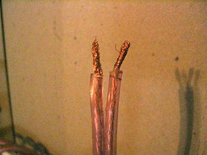 Speaker wire - Stripped speaker wires