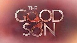 The Good Son (TV series) - Wikipedia