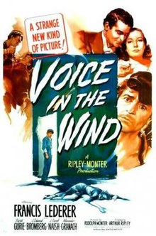 Voice in the Wind poster.jpg