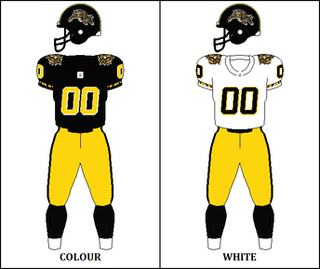 2002 Hamilton Tiger-Cats season Season of Canadian Football League team the Hamilton Tiger-Cats