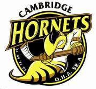 Cambridge Hornets - Image: Cambridge Hornets