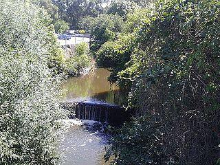 Darling Mills Creek river in Australia