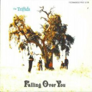 Falling Over You - Image: Falling over you