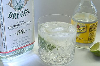 Gin and tonic with Bombay Gin, lime and Schwep...
