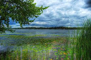 Lake Scugog - Lake Scugog on a cloudy day.