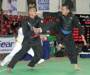 Pencak silat at the 2005 Southeast Asian Games