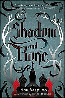 Image result for shadow and bone book