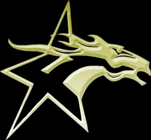 Lone Star Mustangs - Image: Lone Star Mustangs