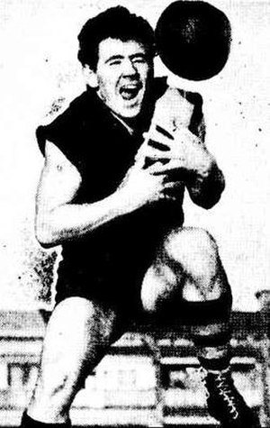 Tom Hafey - Image: Tom Hafey