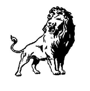 Washington Lions - Image: Washington lions 1943