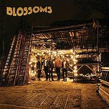 220px-Blossoms_album.jpg