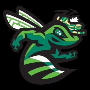 Augusta GreenJackets - Image: Green Jackets cap