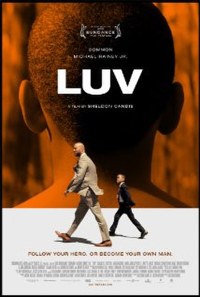 Picture of a movie: Luv