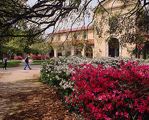 Louisiana State University - Foster Hall as seen from Troy H. Middleton Library