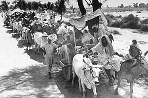 "History of human migration - Rural Sikhs in a long ox-cart train heading towards India. Margaret Bourke-White, 1947. The migration was a ""massive exercise in human misery"", wrote Bourke-White."
