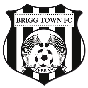 Brigg Town F.C. - Image: Briggtownfc