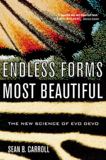 <i>Endless Forms Most Beautiful</i> (book) 2005 book by Sean B. Carroll
