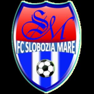 FC Slobozia Mare - Image: FC Slobozia Mare
