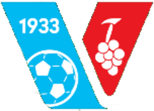 FK Vajnory - FK Vajnory's crest