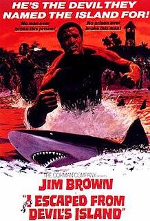 1973 film by William Witney