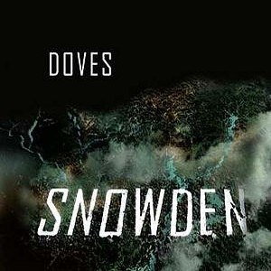 Snowden (song)