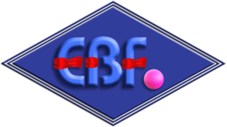 Cambridgeshire - The logo of England Bandy Federation, based in Cambridgeshire