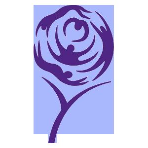 Leeds Force - Image: Leeds Carnegie Old Logo
