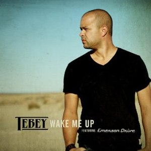 Wake Me Up (Avicii song) - Image: Wake Me Up Tebey
