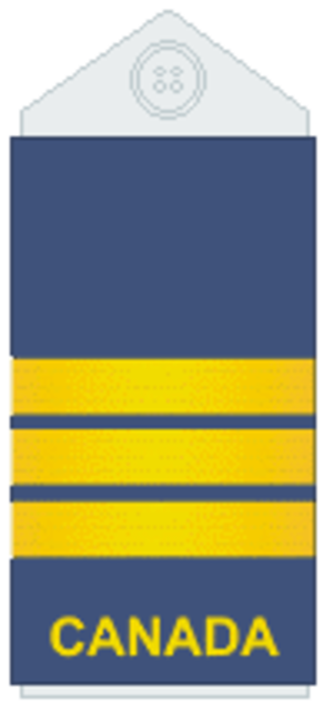 Lieutenant-colonel (Canada) - Image: Air Force slip on L Col