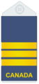Air Force slip-on LCol.png